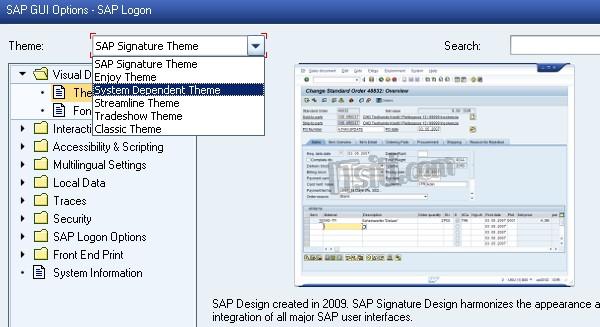 Changing SAP Theme