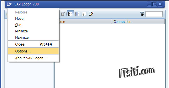 Backup & Restore SAP Logon Connection Entries to Another